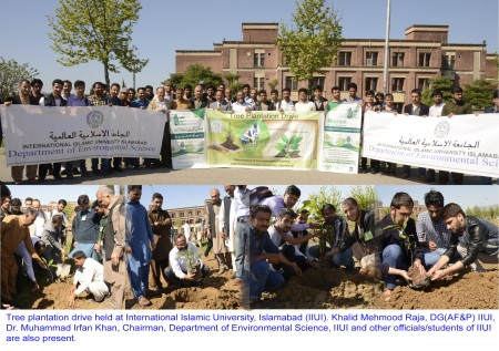 DEPART OF ENVIRONMENTAL SCIENCE LAUNCHES PLANTATION DRIVE IN